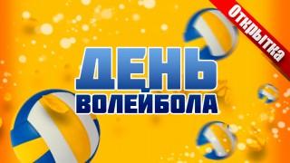 День волейбола